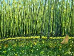 Sous Bois, spring morning 11 14, oil on canvas (6/2015)